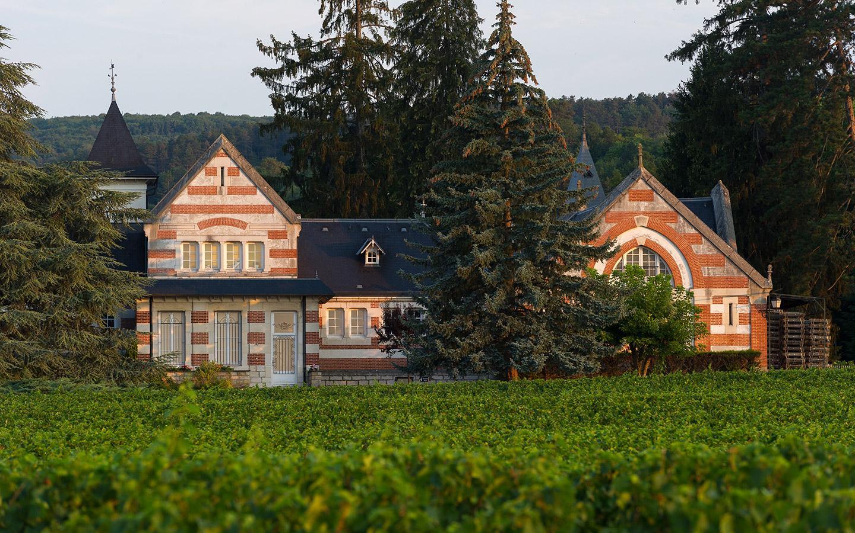 <p>Des vins puissants<br /> offrant profondeur &amp; élégance</p>
